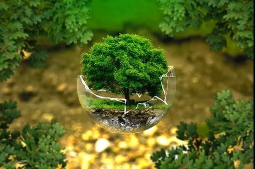 年度盘点|环保、贸易战…2018年十大家居行业关键词