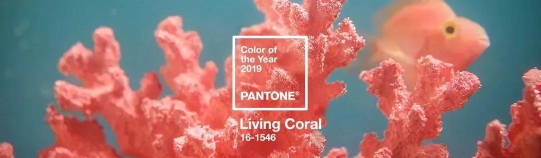 """被2019年流行色""""活力珊瑚红""""圈粉?家居也可以时尚感满满!"""