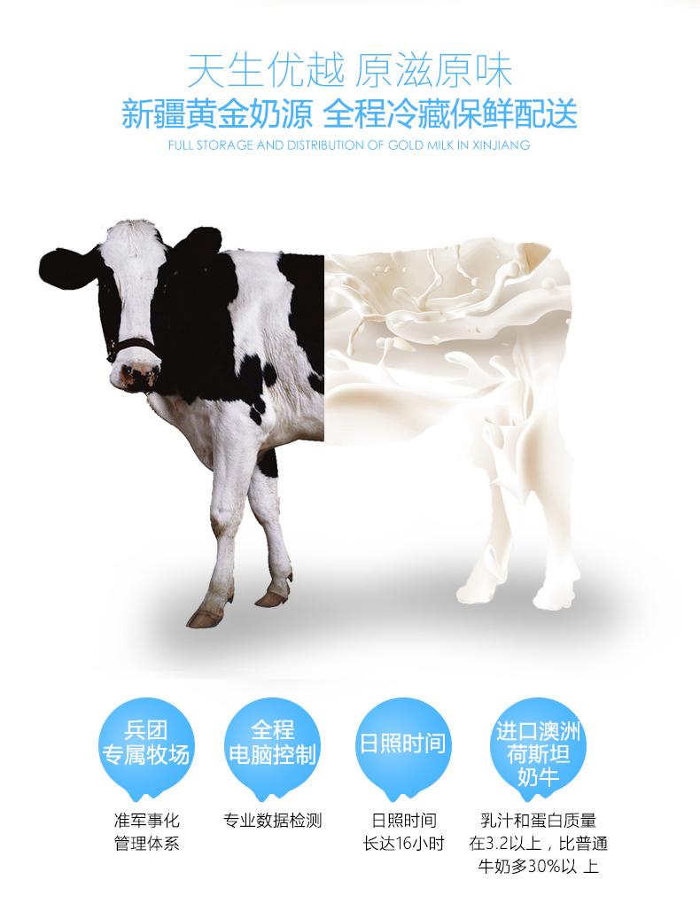 巴氏杀菌纯牛奶