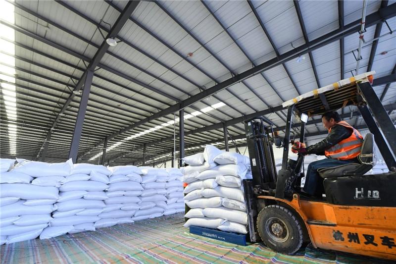 甘肃省首列俄罗斯进口亚麻籽货运专列在甘肃万博manbetx官网 welcome专运线卸货