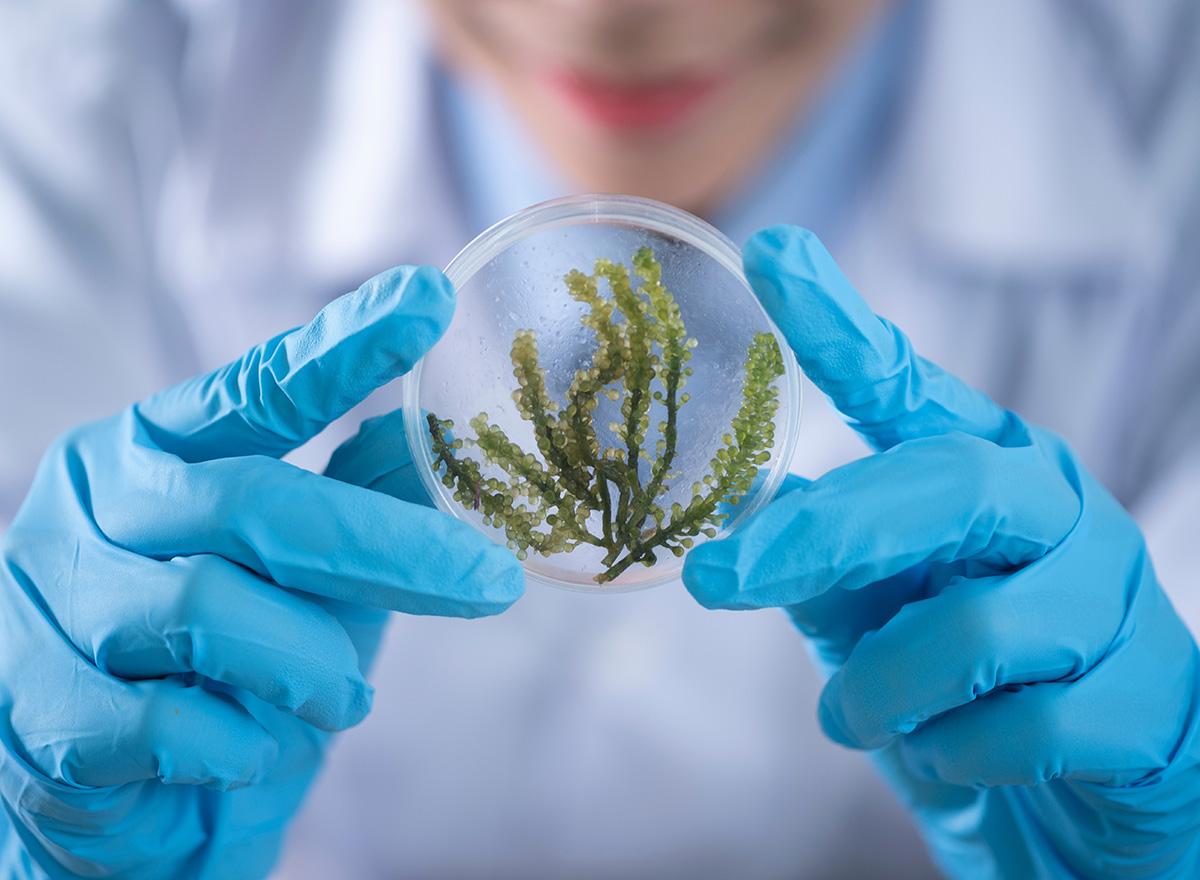 2019年执业药师分析化学:溶剂萃取