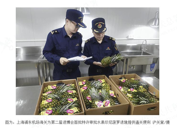 首批印度尼西亚菠萝通关进境 即将亮相第二届进博会