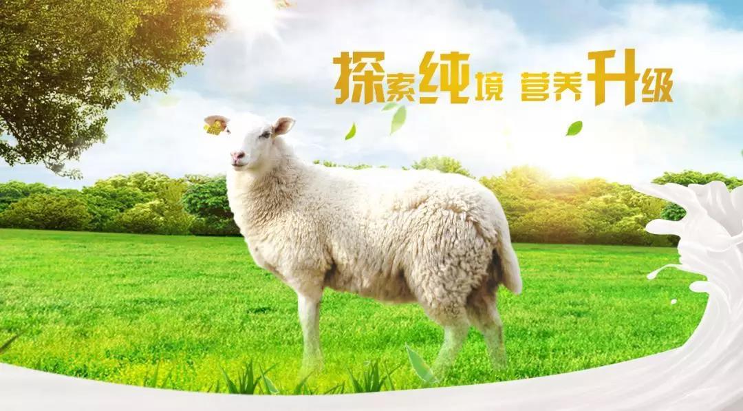 不同月龄的宝宝,配方羊奶粉喂养量如何把握?