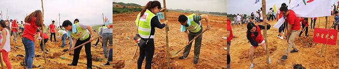 """【植树造林,绿色共建】华星光电2016""""创新深圳·绿色家园""""植树活动"""