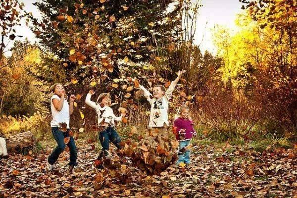 秋天跟孩子一起捡树叶的亲子游戏合集