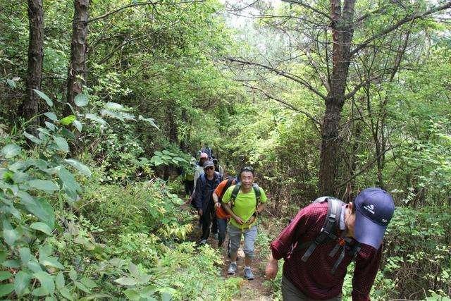徒步登山拓展训练活动心得体会