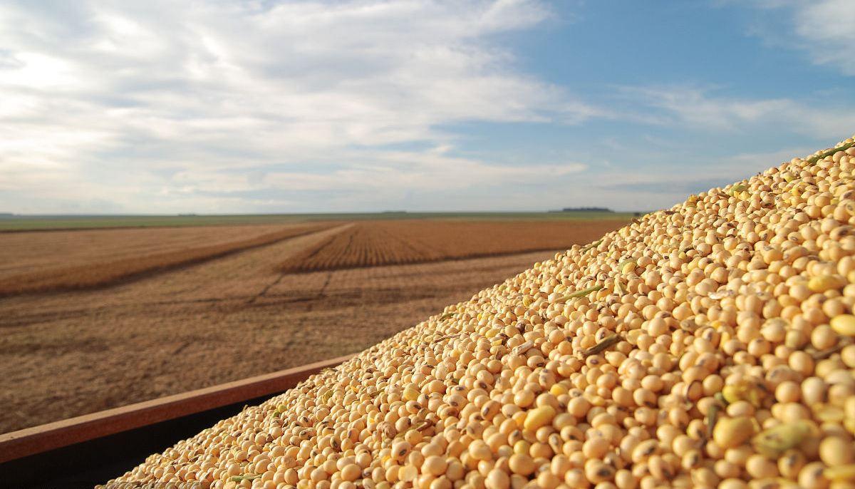 海关:中国1-10月份大豆进口同比下降8.1%至7069万吨