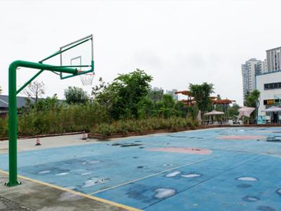 校园环境 | 运动场