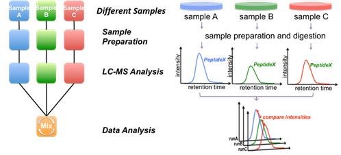 定量蛋白质组学