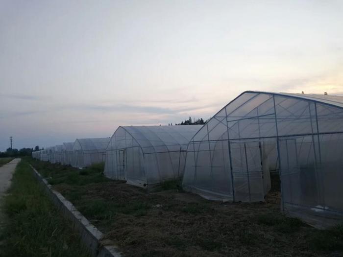 武汉市文鼎农业蔬菜新品种引试研发基地建设项目现代农业水肥一体化示范区