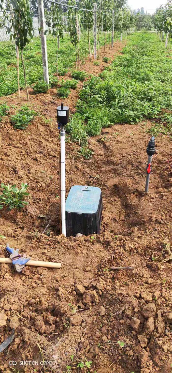 襄陽老河口果品研究所果樹研究基地水肥一體化示范區