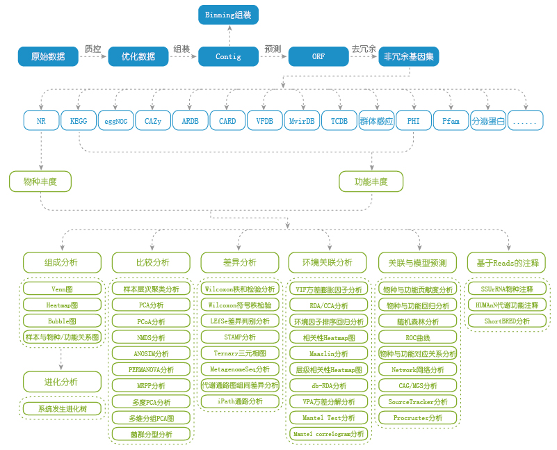 宏基因组测序服务