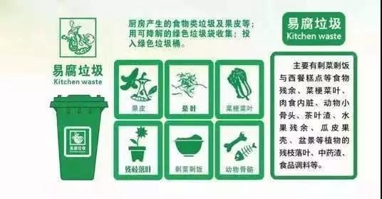 最高罚5万!还有8天,逼疯上海人的垃圾分类就要来武汉了!