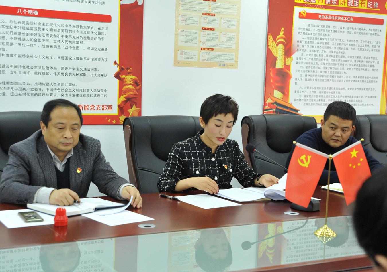 博阳新能党支部召开专题组织生活会暨开展民主评议党员活动