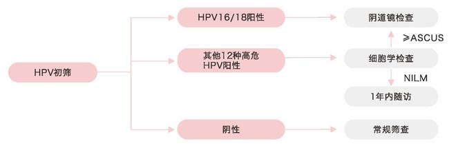 HPV16/18分型联合16种高危亚型检测
