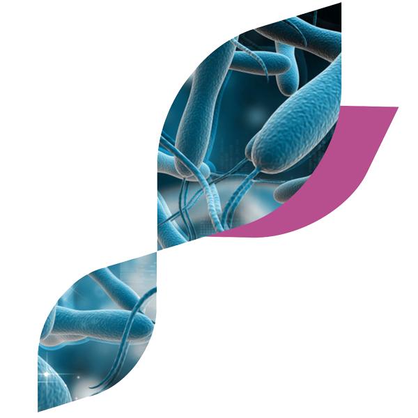 肠道病毒核酸检测系列产品(荧光PCR法)
