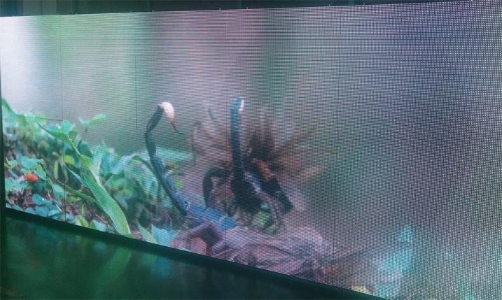 张家港华士中学LED显示屏专用P10户外表贴箱体