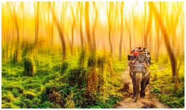 2020尼泊尔洒红节