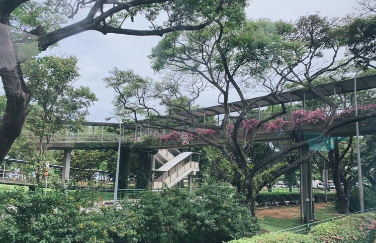 留学高性价比国家——新加坡