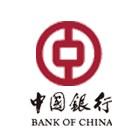 中国银行上海市分行财务报表智能识别系统项目