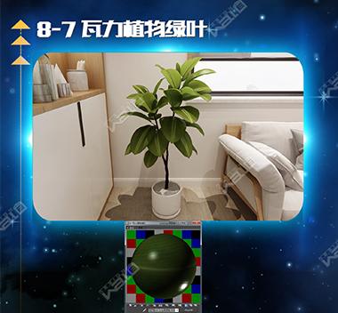 瓦力植物绿叶