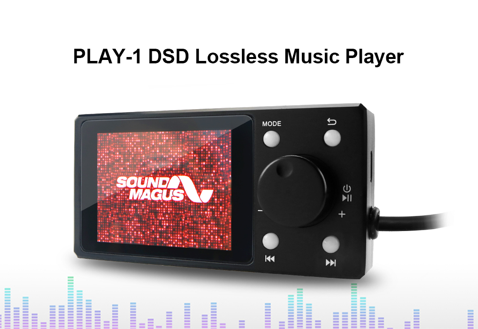 PLAY-1DSD