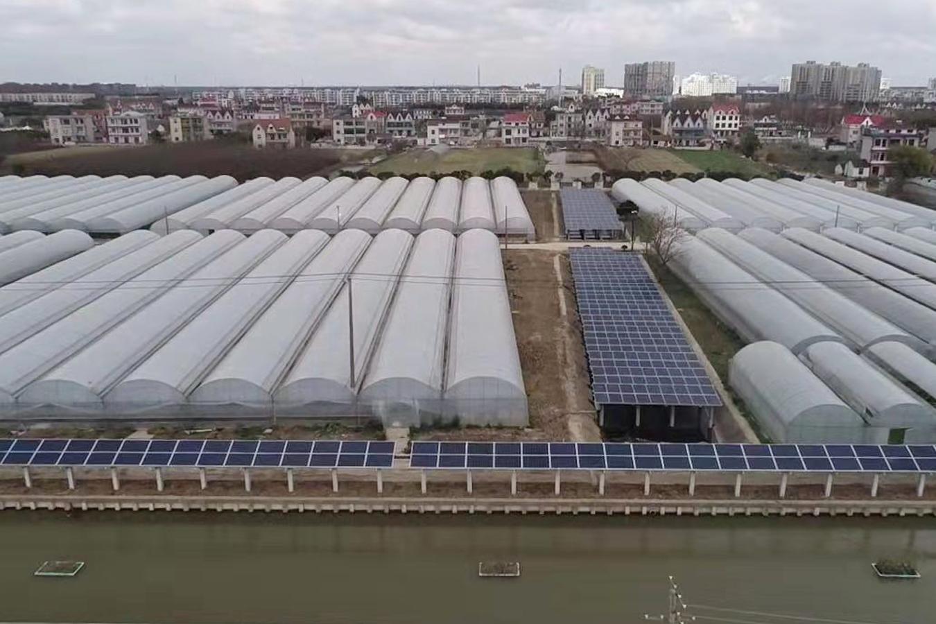 上海农林职业技术学院多能互补能源系统交付使用
