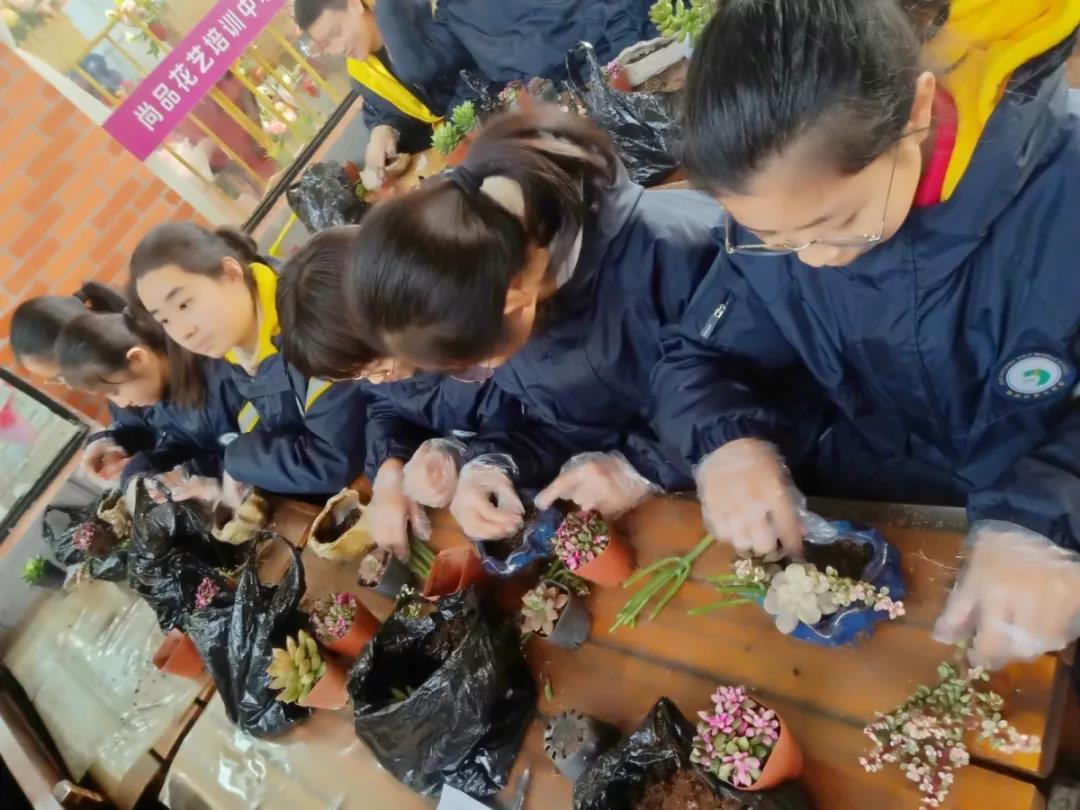 感受植物之美,体验栽培之乐 ——陈砦花卉市场迎接郑州市第七初级中学生物组组织学生研学活动