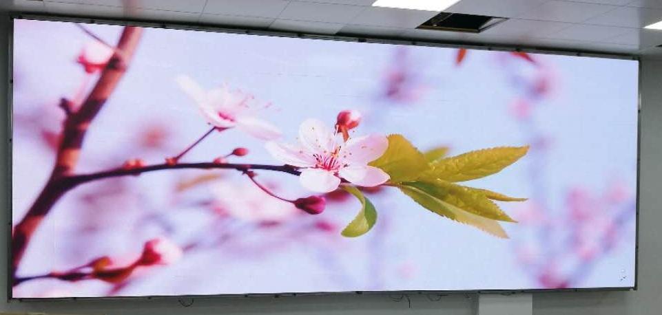 奥马哈助力行政中心订制LED显示屏