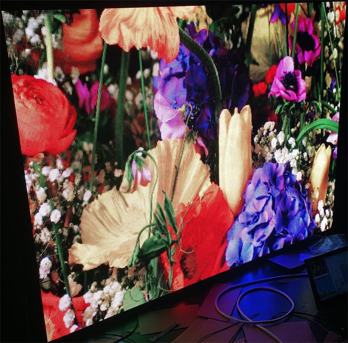 石家庄LED户外显示屏单红模组专用20CM成品电源线(奥马哈)