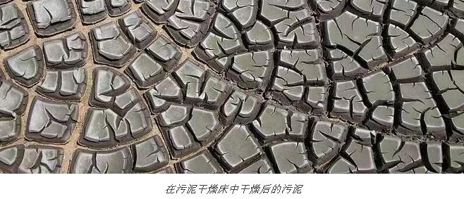 国外通常是怎样进行污泥处理的?