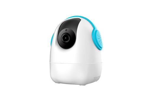 T5832HCA IP Camera