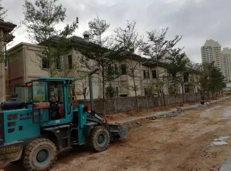 小区绿化施工