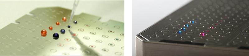 全自动微生物质谱检测系统 MicroIDSys