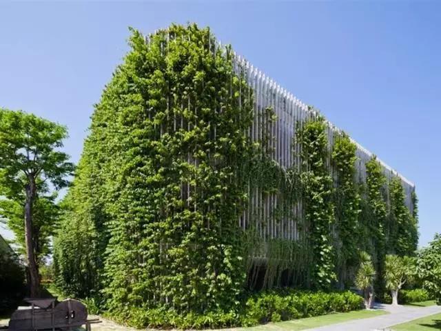 典型垂直绿化设计