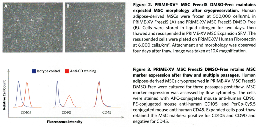 PRIME-XV MSC FreezIS DMSO-Free