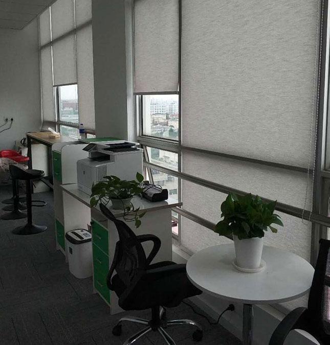植物租赁方案二