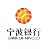 成都银行信贷管理系统优化升级