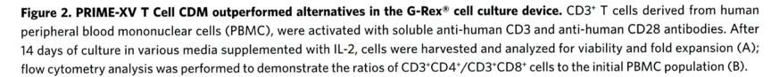 PRIME-XV T Cell CDM
