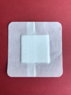 Adhesive dressing with pad