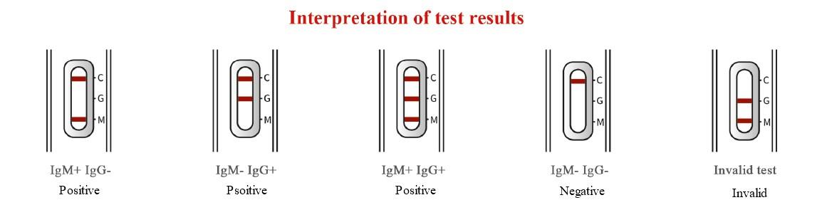 2019-nCoV IgG/IgM Antibody Rapid Test Kit