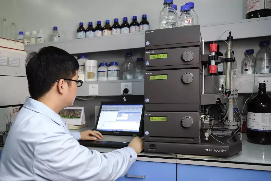 bob棋牌生物丨蛋白多肽全产业链研发生产服务商