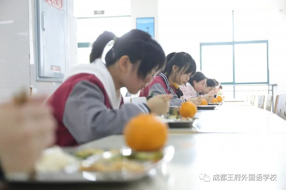春暖花开 情满校园|成都王府外国语学校初三年级有序开学