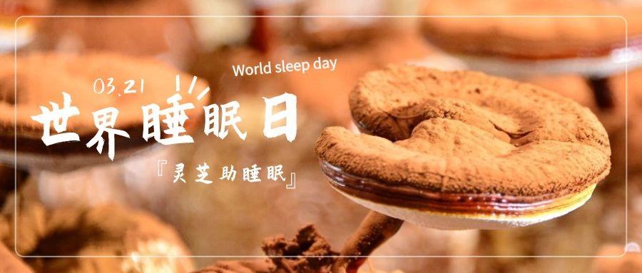 世界睡眠日:伟德国际娱乐官方网站具有改善睡眠作用