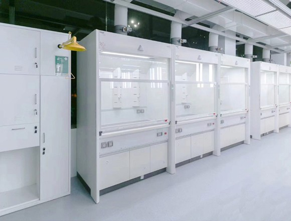 Fume Hood:Renggli (Switzerland)