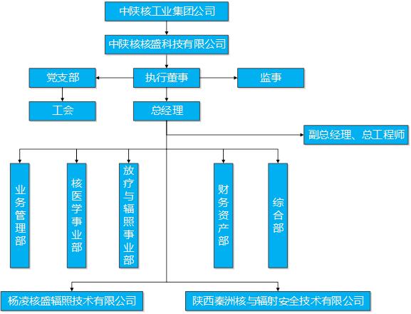 核盛科技企业集团架构