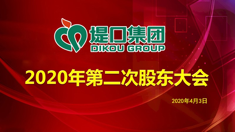 集团公司召开2020年第二次股东会