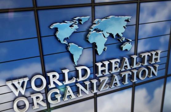 DarkHotel重现江湖,世界卫生组织遭遇黑客攻击