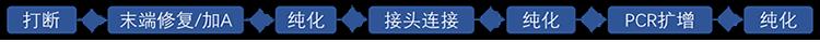 GenoCare病原微生物宏基因组测序试剂盒