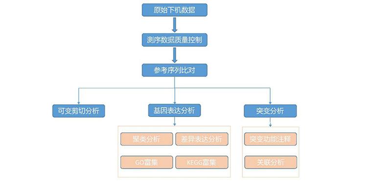 GenoCare转录组测序试剂盒